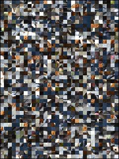 Belarussian Puzzle №114160