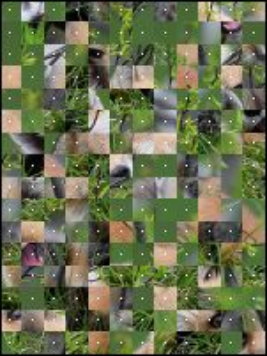 Belarussian Puzzle №124565