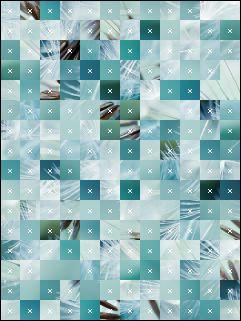 Belarus Puzzle №15097
