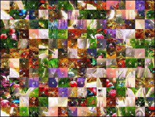 Belarus Puzzle №15549