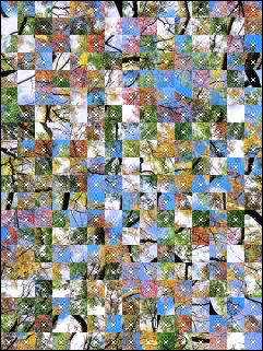 Belarus Puzzle №15702