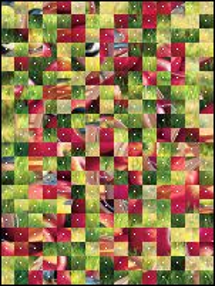 Belarus Puzzle №15948