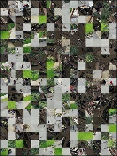 Belarus Puzzle №15957
