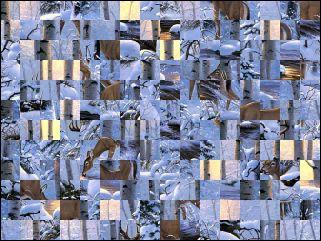 Belarus Puzzle №16088