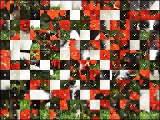 Belarus Puzzle №16217