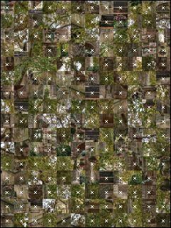 Belarus Puzzle №16909