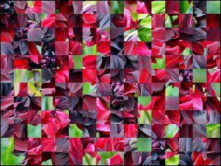 Belarussian Puzzle №170113