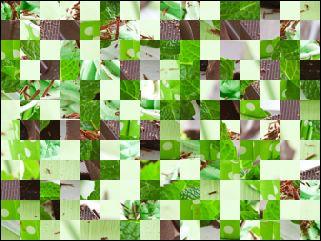 Belarussian Puzzle №177838