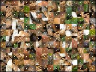 Belarussian Puzzle №188685