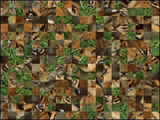 Belarus Puzzle №24310