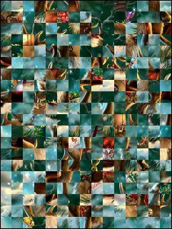 Belarus Puzzle №25155