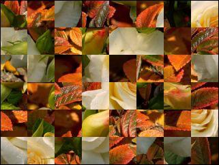 Belarussian Puzzle №269125