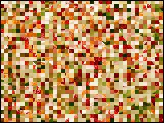 Belarussian Puzzle №270693