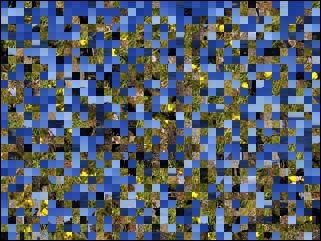 Belarus Puzzle №28177