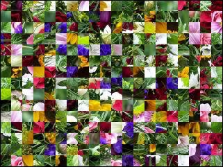 Belarus Puzzle №28476