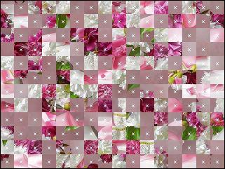 Belarus Puzzle №30015