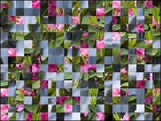 Belarus Puzzle №30469
