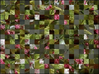 Belarus Puzzle №31825
