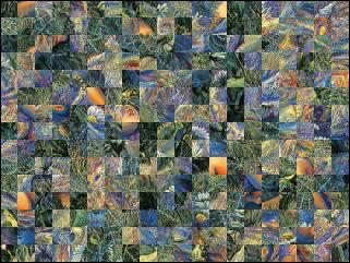Belarus Puzzle №31973