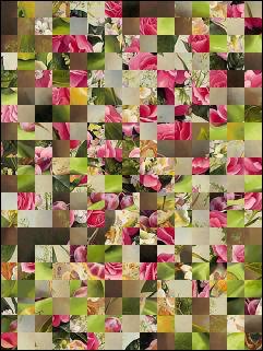 Belarus Puzzle №32064