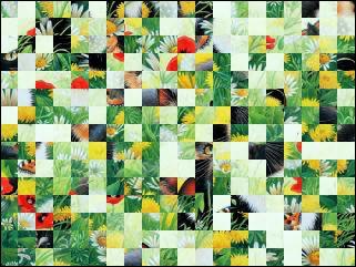 Belarussian Puzzle №33245