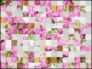 Belarus Puzzle №33376