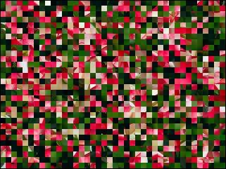 Belarus Puzzle №39887
