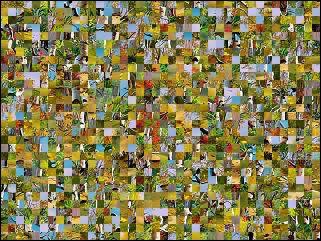 Belarus Puzzle №61931