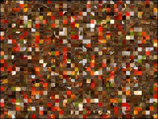 Belarussian Puzzle №88181
