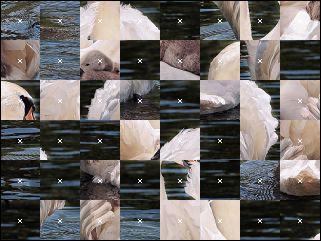 Belarus Puzzle №88372