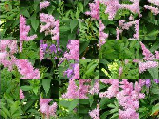 Belarus Puzzle №97131