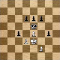 Chess problem №215110