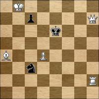Chess problem №248795