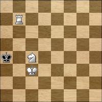 Chess problem №290197