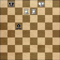 Chess problem №295872