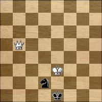 Chess problem №295978