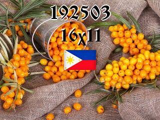 The Philippine puzzle №192503