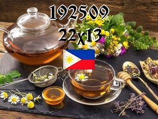 The Philippine puzzle №192509