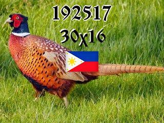 The Philippine puzzle №192517