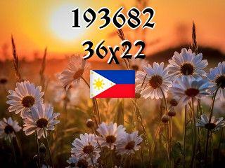 The Philippine puzzle №193682