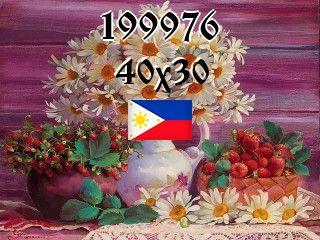 The Philippine puzzle №199976