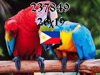 The Philippine puzzle №237849