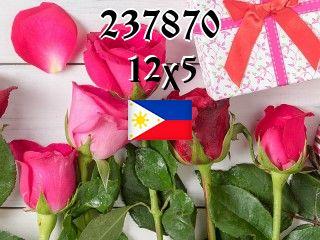 The Philippine puzzle №237870