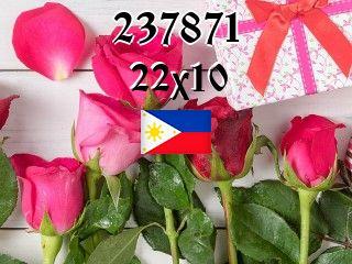 The Philippine puzzle №237871