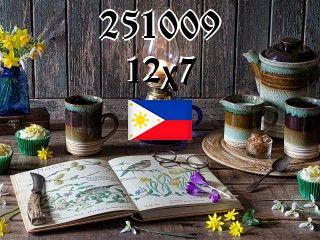 The Philippine puzzle №251009