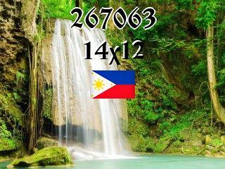 The Philippine puzzle №267063
