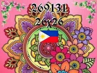The Philippine puzzle №269131