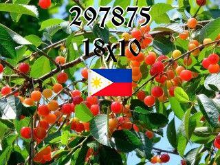 The Philippine puzzle №297875