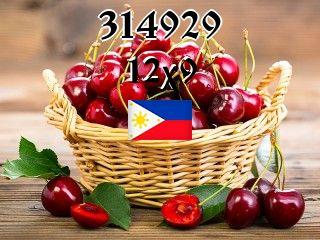 Filipino puzzle №314929