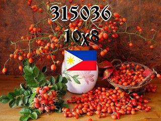 Filipino puzzle №315036